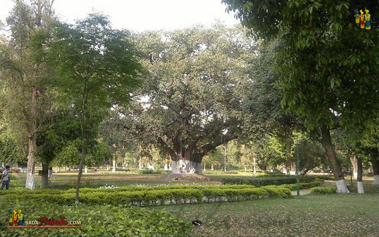 Patiala Baradari Gardens