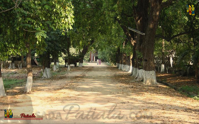 Baradari Garden